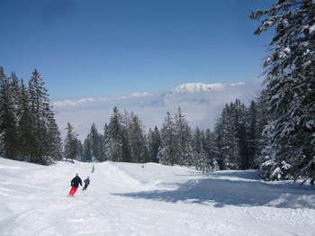 Skiing for beginners and advanced skiers